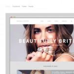 web_design_gallery_05websiteswelove