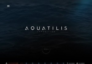 inspiration_dark_web_designs_14aquatilis