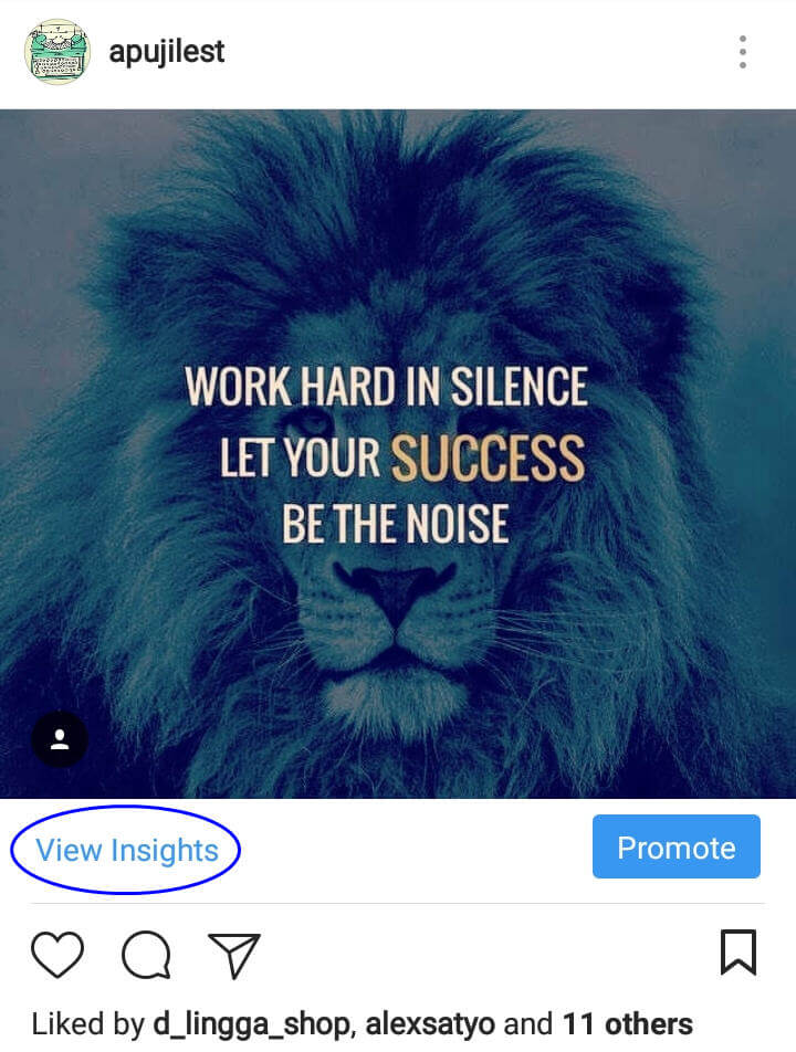 Fitur Insight Akun Instagram